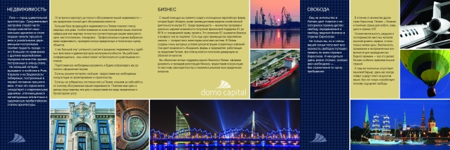 Domo Capital_Flayer_Page_2